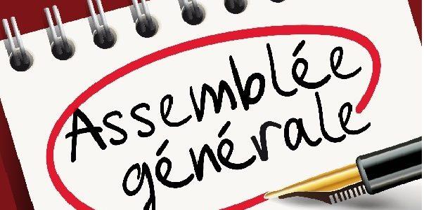 ASSEMBLEE GENERALE 2020 A DISTANCE